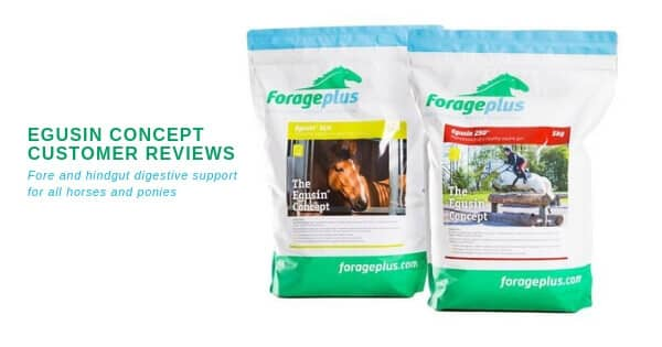 Egusin Reviews ulcer prone horse digestive support