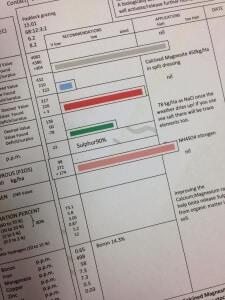 Forageplus soil report for horses