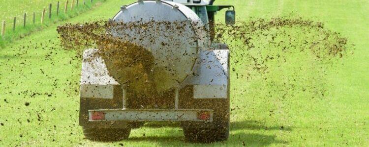 High nitrogen fertilising techniques horse nitrate levels
