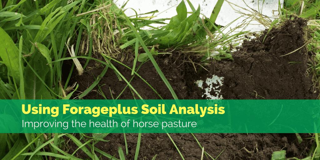 Using Forageplus Horse Pasture Soil Analysis Service