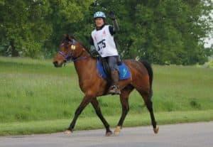 Terry-Madden-and-Mehdrar-Endurance-Horse-Forageplus-1-413×285