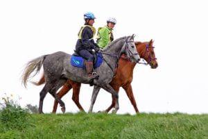 Terry-Madden-and-TAJ-Endurance-Horses-1-671×448