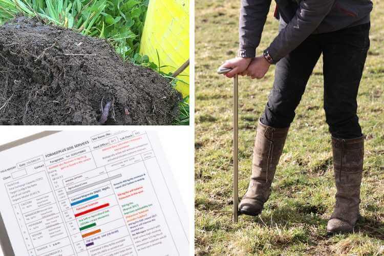 Using Horse Pasture Soil Analysis Service Forageplus