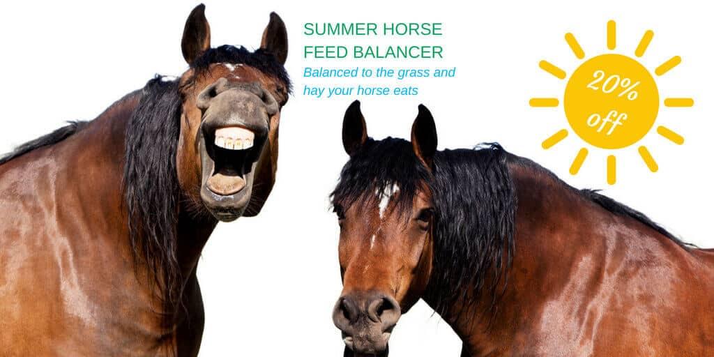 Summer Horse Feed Balancer Forageplus
