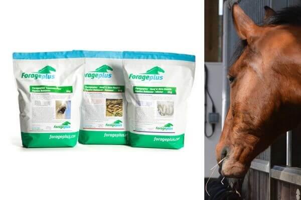 Forageplus-Hoof-Health-Horse-Feed-Balancers-jpg