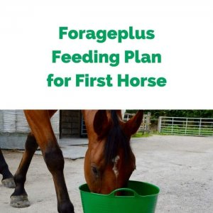 Forageplus-Feeding-Plan-for-First-Horse.jpg