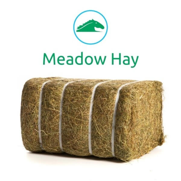 Bale of Meadow Hay from Meadow Hay Pallet