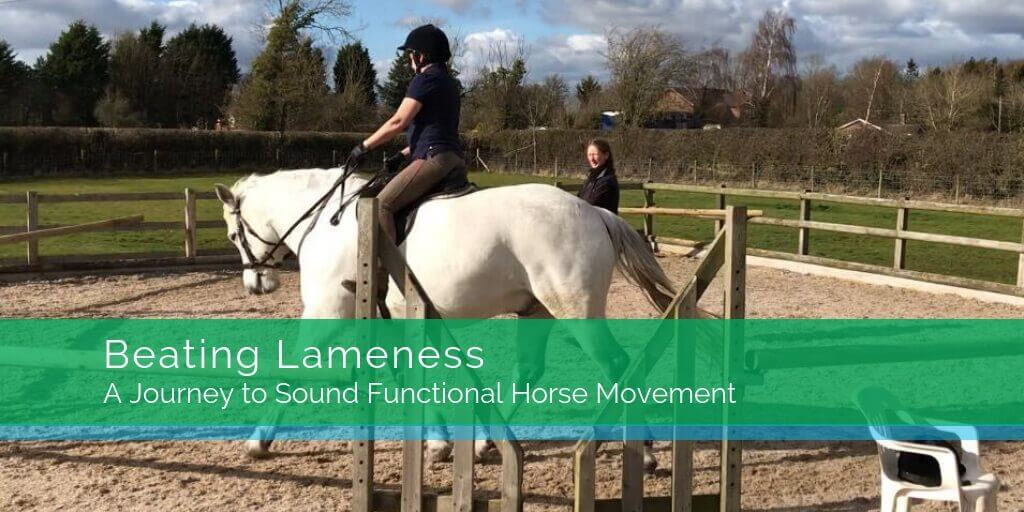 Beating Lameness - A journey to sound functional horse movement