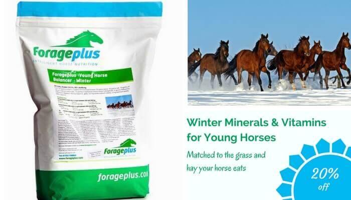 Forageplus-Young-Horse-Winter-Balancer-Coupon-1